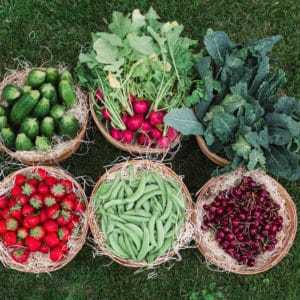 Fresh Produce, Rice and Beans